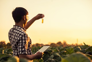 Researcher in a field with a tablet and test tube